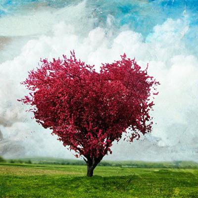 Влюбленность и любовь - найдите отличия!