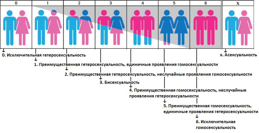 Шкала сексуальной ориентации