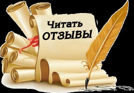 Отзывы об Антоне Несвитском